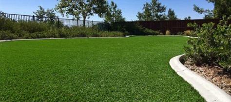 اثر زئولیت بر تنش شوری در گیاهان نشان می دهد که استفاده از آن می تواند سبب افزایش حفظ رطوبت خاک شود